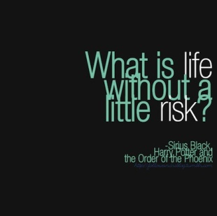 without-a-little-risk-harry-potter-picture-quote